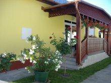 Accommodation Hajdúszoboszló, Tar Guesthouse