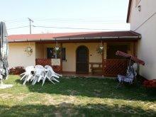 Accommodation Hajdúszoboszló, Andrea Guesthouse