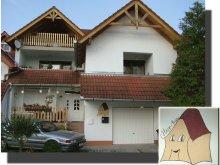 Accommodation Rádfalva, Hepp Guesthouse