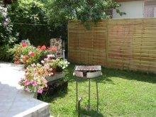 Casă de vacanță Balatonkenese, Apartament Zsuzsanna
