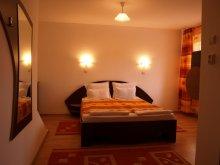 Accommodation Huzărești, Vila Gong
