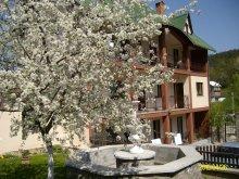 Accommodation Pleșcoi, Mókus Guesthouse