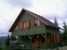 Kulcsosház Bizighești, Boróka Villa