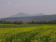 Szállás Révleányvár, Zempléni Vadvirág Vendégház