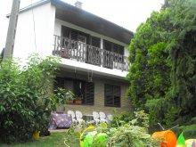 Accommodation Somogy county, Ildikó Apartment