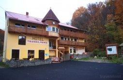 Szállás Bálványosfürdő (Băile Balvanyos), Transilvania Villa