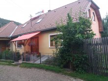 Accommodation Boroșneu Mic, János Guesthouse