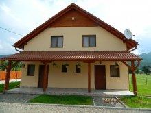 Casă de oaspeți județul Mureş, Casa Loksi