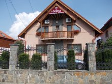 Accommodation Targu Mures (Târgu Mureș), Lőrincz Guesthouse