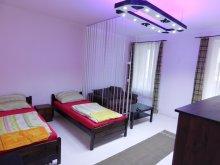 Travelminit accommodations, Frankel Apartment