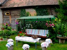 Accommodation Scrind-Frăsinet, Stork's Nest Guesthouse