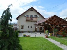 Accommodation Dejuțiu, Fogadó Guesthouse