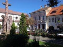 Panzió Székelyszenttamás (Tămașu), Korona Panzió