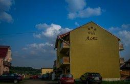 Vilă Voivozi (Popești), Vila Alex