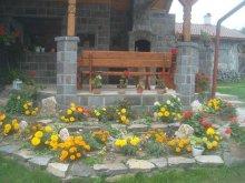 Accommodation Izvoare, Kő Guesthouse
