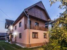 Accommodation Sibiciu de Sus, Finna House