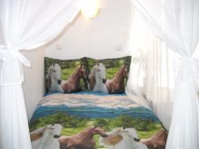 Accommodation Gresia, Corona Vila
