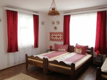 Accommodation Pleșcuța, Boros Guesthouse