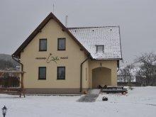 Accommodation Izvoru Berheciului, Tichet de vacanță, Réba Guesthouse
