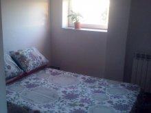 Accommodation Cașolț, Timeea's home Apartment