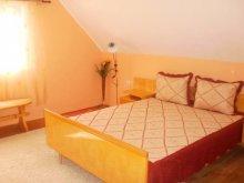 Accommodation Richiș, Medvebarlang Guesthouse