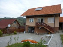 Accommodation Pârâul Rece, Denes Eva Guesthouse