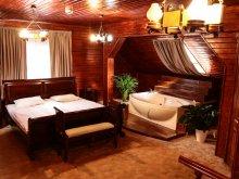 Cazare Întorsura Buzăului, Tichet de vacanță, Hotel Apollonia