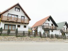 Accommodation Hălmăsău, SuperSki Vilas