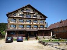 Accommodation Șirnea, Hora cu Brazi Guesthouse
