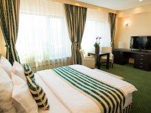 Accommodation Teliucu Inferior, President B&B