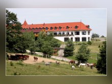 Accommodation Abaliget, Rácz Ranch