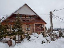 Casă de oaspeți Cucuieți (Solonț), Casa Pingvin