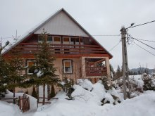 Vendégház Bibarcfalva (Biborțeni), Pingvin Ház