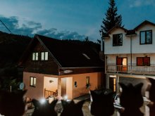 Accommodation Ditrău, Laczkó Kuckó Pension