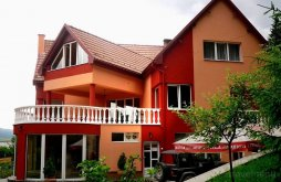 Motel Budacu de Jos, Pensiunea Platon