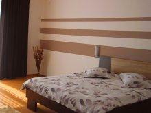 Accommodation Negrenii de Sus, Dan Apartment
