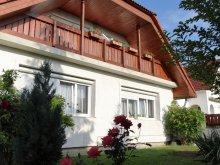 Apartament Nagydém, Pensiunea Robitel