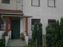 Accommodation Mezőcsát, Molnár Guesthouse