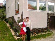 Casă de oaspeți Sânnicolau de Beiuș, Pensiunea Monika