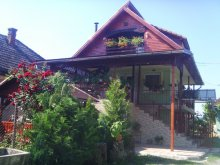 Accommodation Agrieșel, Enikő Guesthouse