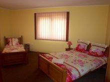 Accommodation Sovata, Tichet de vacanță, Erzsébet Guesthouse