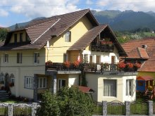 Accommodation Broșteni (Produlești), Casa Enescu B&B