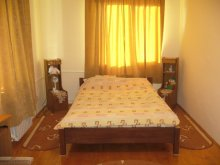 Accommodation Suceava county, Tichet de vacanță, Lary Hostel