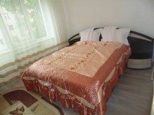 Accommodation Lunca (Vârfu Câmpului), Lary Apartment