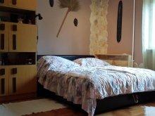 Accommodation Hungary, Boris Apartment