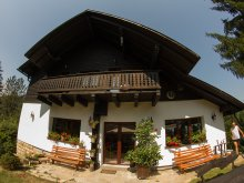 Accommodation Cătămărești-Deal, Ionela Chalet