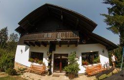 Chalet near Putna Monastery, Ionela Chalet