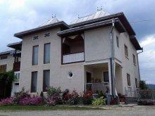 Casă de vacanță Bârgăuani, Pensiunea Sandina