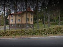 Vilă Bistrița Bârgăului Fabrici, Vila Onix