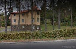 Villa Parajdi sóbánya közelében, Onix Villa